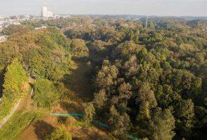 上空から野鳥の森散策路